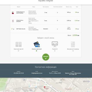Mini-store website design